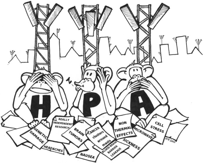 The HPA monkeys